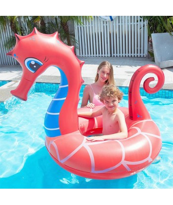 Inflatable Pool Float...