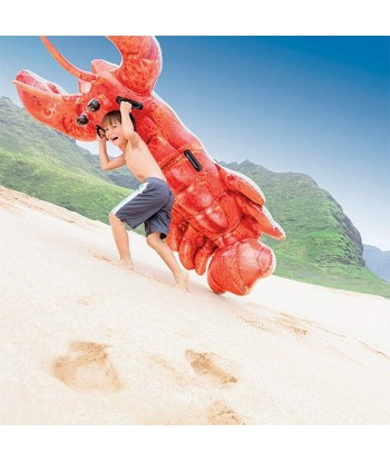Inflatable Lobster Airbed...