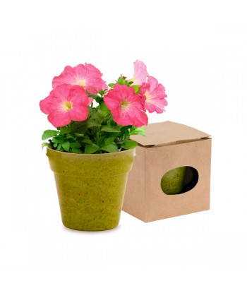 Pot with Seeds 149966 Includes