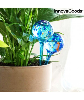Automatic Watering Globes...